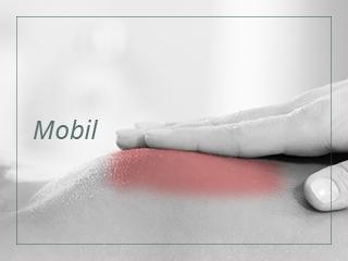 trakica_mobile_mobil